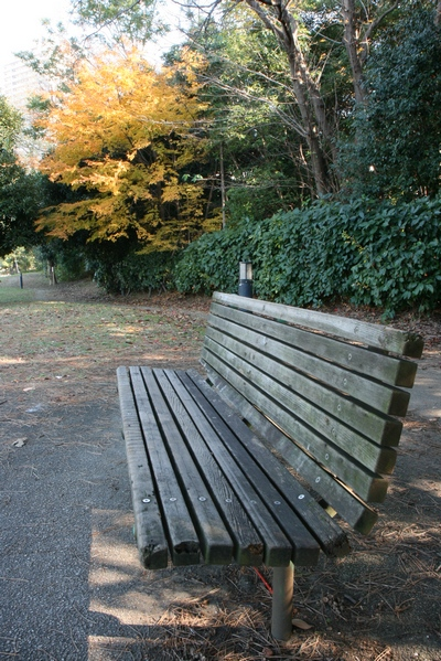 Park bench near beach